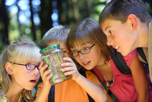 In the second part in this four-part series, we speak about how you can protect your students from insect bites.